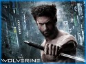 Wolverine, The (2013)